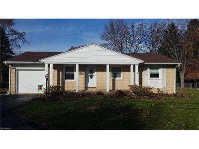 Summit County Single Family Home For Sale: 793 Renninger Rd