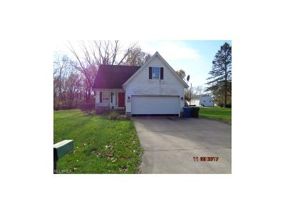 Summit County Single Family Home For Sale: 362 Harter Ave