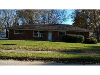 Summit County Single Family Home For Sale: 4163 Klein Ave