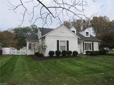 Summit County Single Family Home For Sale: 1079 Greenvale Ave