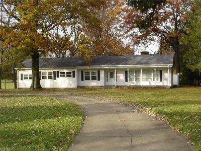Medina Single Family Home For Sale: 969 East Washington