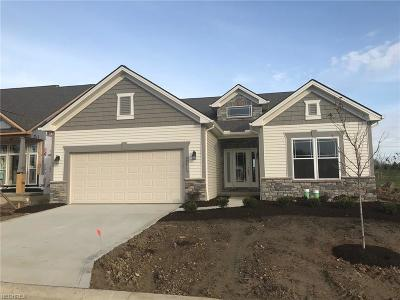 Strongsville Single Family Home For Sale: 22413 Oxbow Path