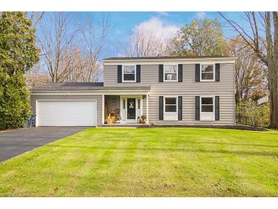 Summit County Single Family Home For Sale: 435 Schocalog Rd