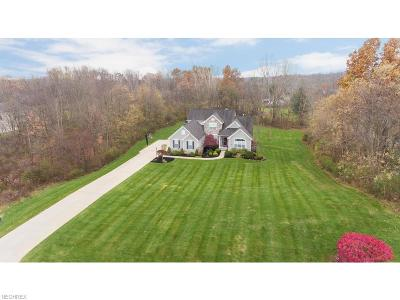 Summit County Single Family Home For Sale: 4886 Paxton Rd