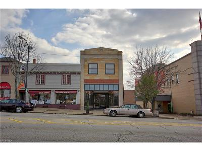 Stark County Commercial For Sale: 167 Lincoln Way East