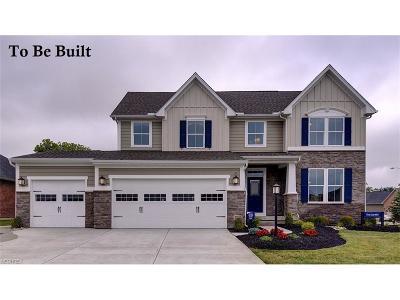 Medina Single Family Home For Sale: 3936 Crimson Harvest Ln