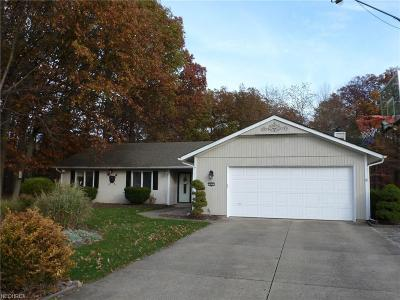Strongsville Single Family Home For Sale: 9669 Plum Brook Ln West