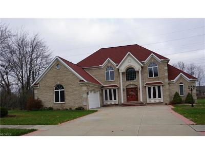 Cuyahoga County Single Family Home For Sale: 3459 Magnolia Dr