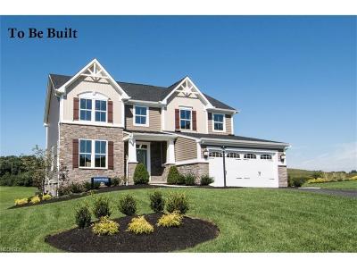 Brunswick Single Family Home For Sale: 287 Winchester Ln
