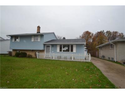 Parma Single Family Home For Sale: 11421 Stormes Dr