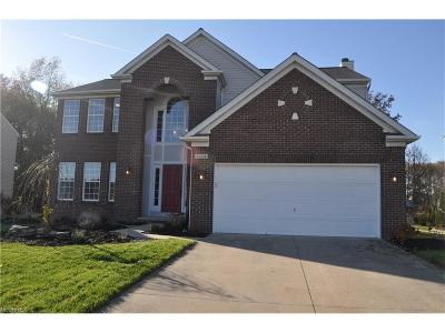 Olmsted Falls Single Family Home For Sale: 9224 Aaron Ln #39