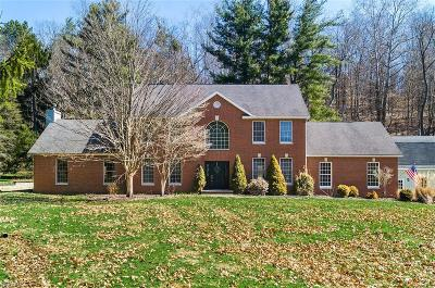 Licking County Single Family Home For Sale: 3198 Raccoon Valley Rd