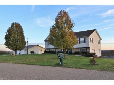 Muskingum County Single Family Home For Sale: 6600 Old Stagecoach Rd