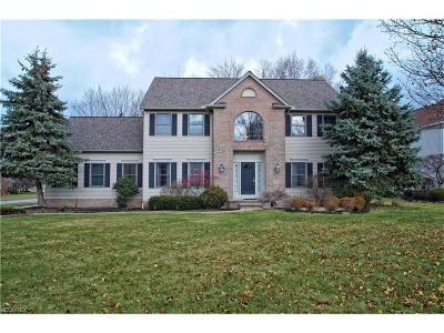 Cuyahoga County Single Family Home For Sale: 5789 Pinehurst Ct