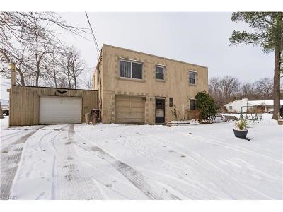 Ashtabula County Single Family Home For Sale: 4073 Austin Rd