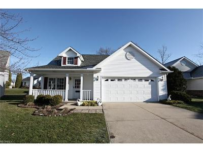 North Royalton Single Family Home For Sale: 5292 White Swan Ct