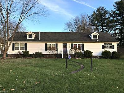 Canfield Single Family Home For Sale: 8941 South Salem Warren Rd