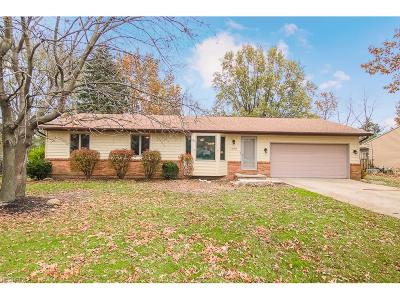 Strongsville Single Family Home For Sale: 18819 Hearthstone Dr