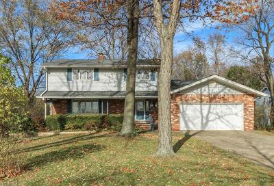 Willoughby Single Family Home For Sale: 36111 Ridge Rd