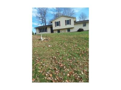 Muskingum County Single Family Home For Sale: 1663 Coal Run Rd