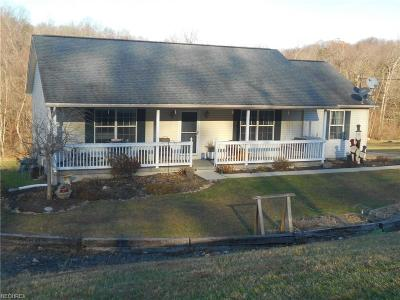 Licking County Single Family Home For Sale: 13115 Flint Ridge Rd Southeast