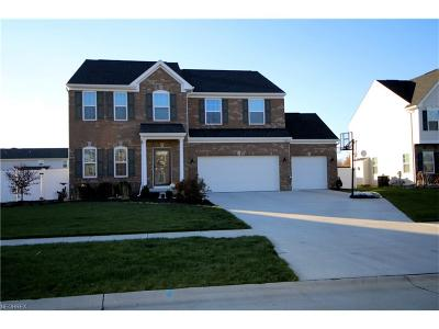 North Ridgeville Single Family Home For Sale: 7318 Warblers Ln