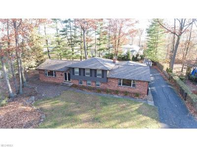 Copley Single Family Home For Sale: 103 Scenic View Dr