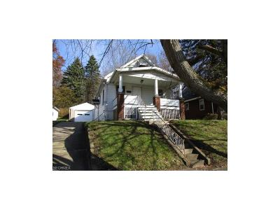 Struthers Single Family Home For Sale: 53 Wilhelm St