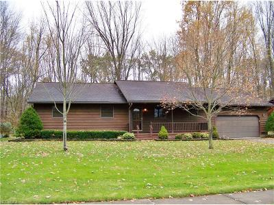 North Ridgeville Single Family Home For Sale: 36219 Behm Dr
