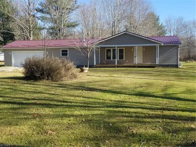 Ashtabula Single Family Home For Sale: 4132 Benetka Rd