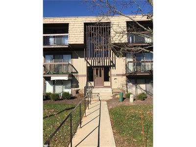 North Royalton Condo/Townhouse For Sale: 9731 Sunrise Blvd #M27