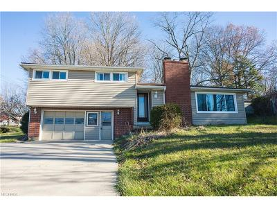 Wadsworth Single Family Home For Sale: 105 Trease Rd