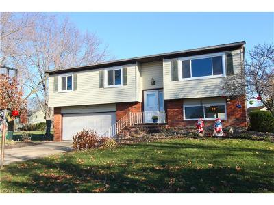 North Ridgeville Single Family Home For Sale: 5395 Manning Cir