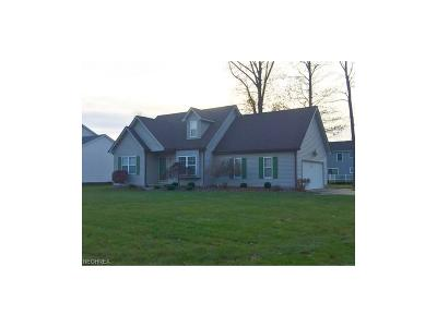 Youngstown Single Family Home For Sale: 1250 Signature Dr