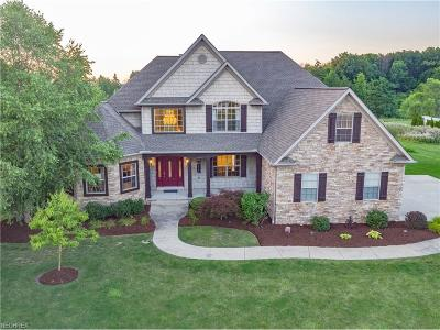 Wadsworth Single Family Home For Sale: 1331 Kings Ridge Blvd