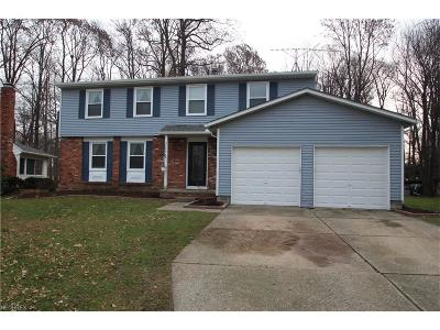 Mentor-On-The-Lake Single Family Home For Sale: 5849 Marine Pky