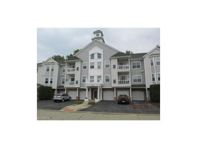 Avon Lake OH Condo/Townhouse For Sale: $129,900