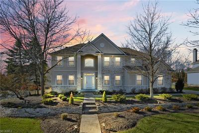 Brecksville, Broadview Heights Single Family Home For Sale: 7915 Windridge Dr