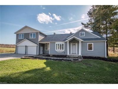 Hinckley Single Family Home For Sale: 2544 Babcock Rd
