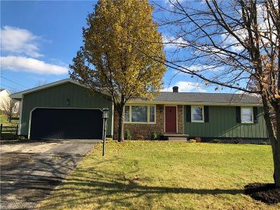 Youngstown Single Family Home For Sale: 2097 South Turner Rd