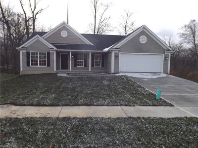 Ravenna Single Family Home For Sale: 3490 Creekview Dr