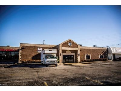 Mentor OH Commercial For Sale: $1,001,000