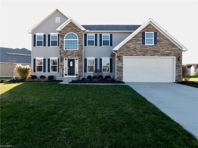 North Ridgeville Single Family Home For Sale: 9012 Wyllys Dr
