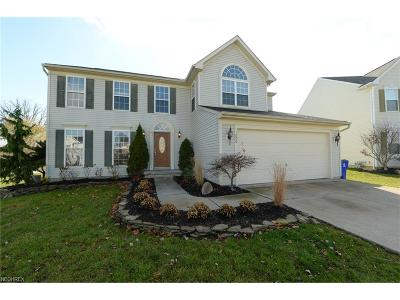Kent Single Family Home For Sale: 1006 Crestview Dr