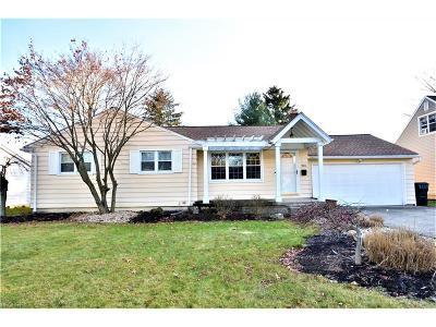 Boardman Single Family Home For Sale: 923 Larkridge Ave