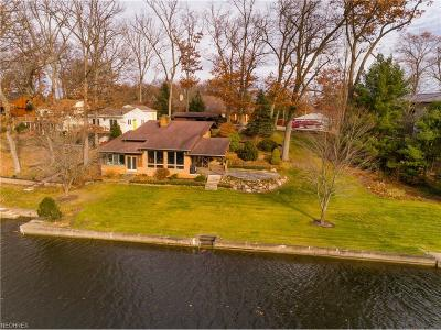 Summit County Single Family Home For Sale: 4596 Rex Lake Dr