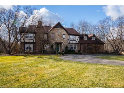 Geauga County Single Family Home For Sale: 9055 Music St