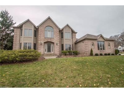 Strongsville Single Family Home For Sale: 19037 Seven Oaks Dr