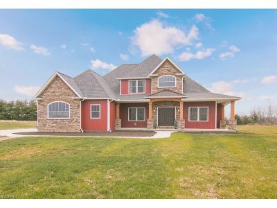 Medina Single Family Home For Sale: 6410 Livia Ln