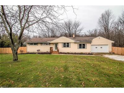 Painesville Single Family Home For Sale: 7286 Callow Rd